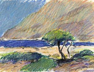 Oliventræ på Kreta - Oliekridt